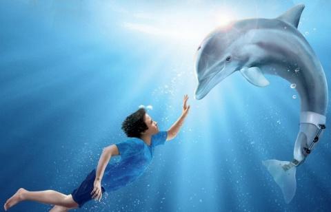 Подборка фильмов о дельфинах
