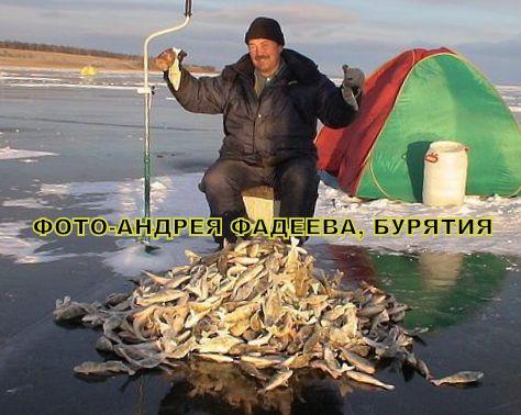 Рыбалка в бурятии увеличить