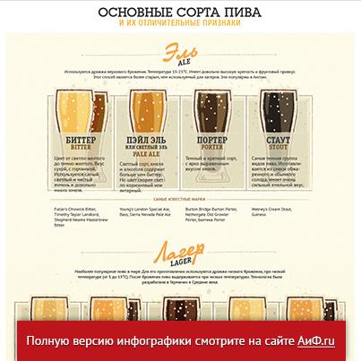 Основные сорта пива и их признаки. Инфографика