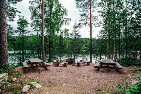 Как в Финляндии избавились о…