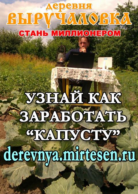 В деревне Выручаловке сезон выращивания капусты