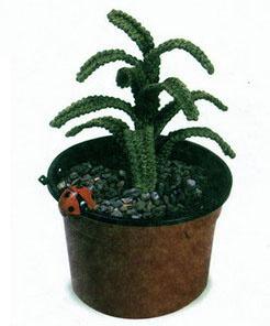 Вязанные комнатные растения