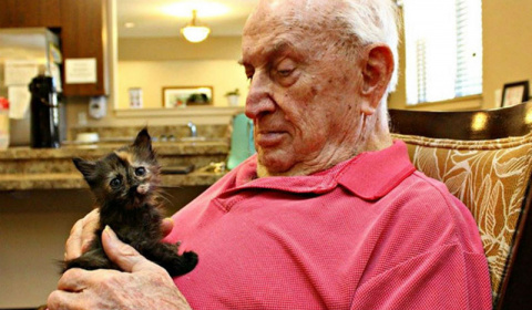 Дом престарелых, где заботят…