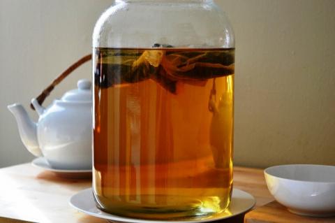 На фиг нужен чайный гриб?