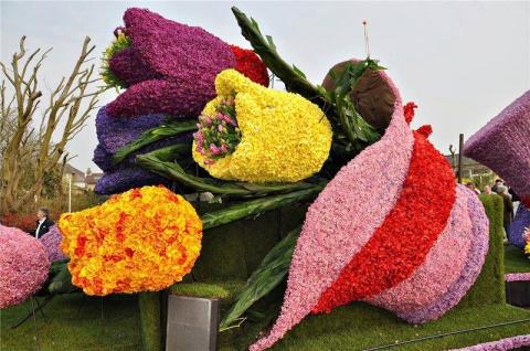 Примеры оформления цветочных клумб