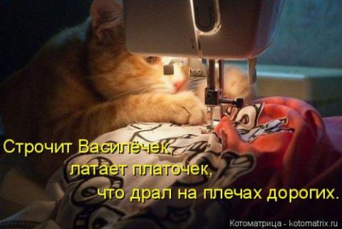 Новые, чудесные котоматрицы