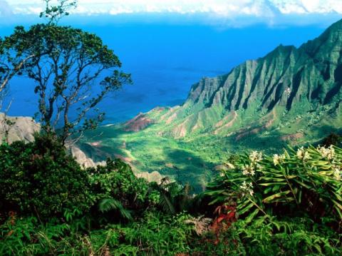 Гавайи становятся пеклом