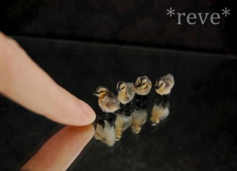 Миниатюрные зверюшки от мастера под ником Reve