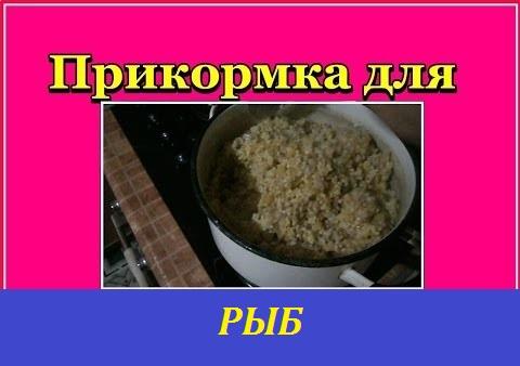 69. самодельная прикормка. Рецепты