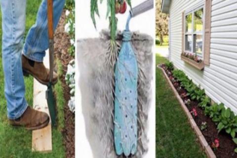 20 крутых советов для сада, которые нужно обязательно увидеть, чтобы поверить в их существование!