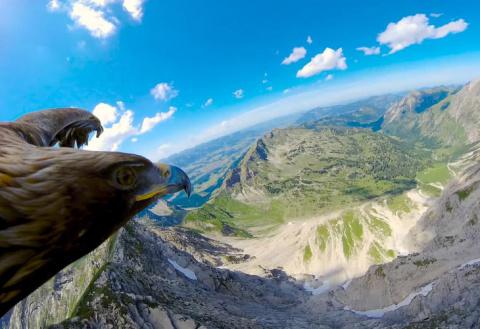 Как выглядят Альпы с высоты …