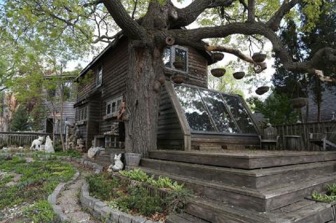 За 38 лет художница превратила свой дом в произведение искусства