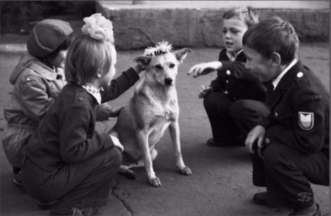 Про детство, собак и патологическую любовь к ним