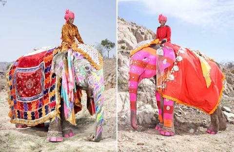 Индийцы знают толк в тюнинге слона