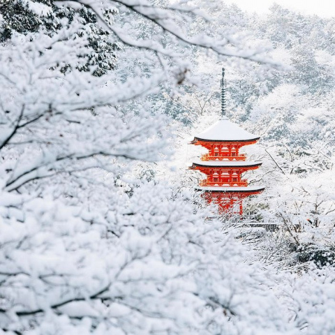 На древнюю столицу Японии обрушился  невиданный снегопад: фоторепортаж