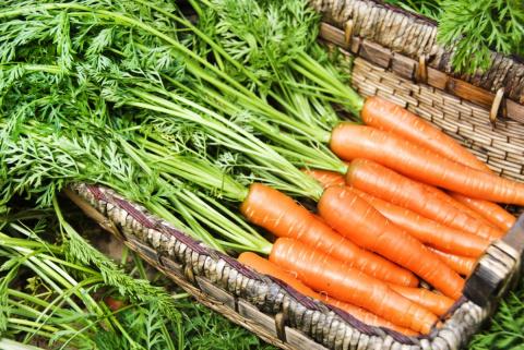 8 способов хранения моркови, которые вас не подведут!