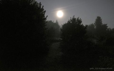 Ночь, луна и туман