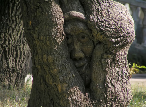 Почему мы стучим по дереву?