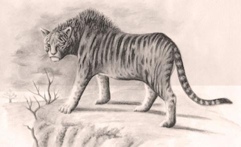 Загадочный зверь Мнгва - афр…
