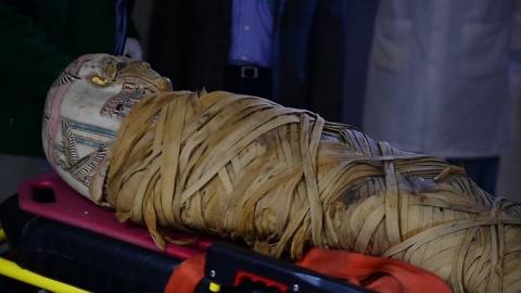 Врачи диагностировали у мумии рак — через 2 тысячи лет после смерти