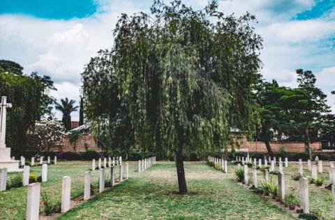 Естественные похороны призна…