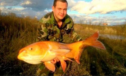 Неожиданный улов...Вот это рыбалка!