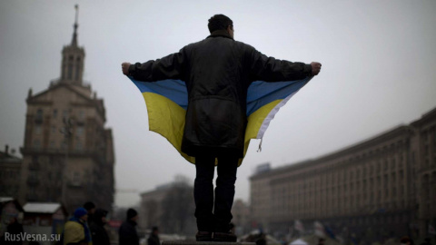 Почему украинская власть рушит собственную экономику