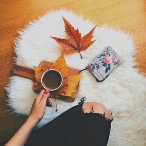 Инстаграм недели: осень в Новосибирске