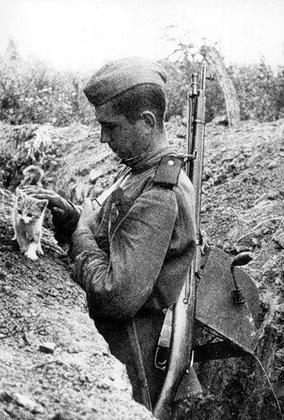Солдатские рассказы: история…