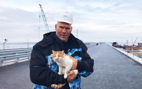 Валуев и котик проинспектиро…
