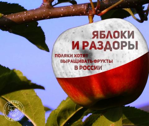 Удар в яблочко: Польша «заги…