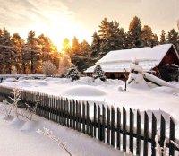 Зимние работы в саду: наводим порядок на заснеженной территории