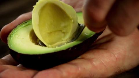 Большое зеленое яйцо или Аво…
