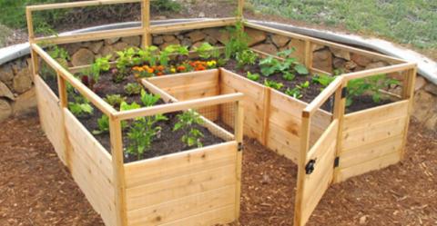 7 простых вариантов для садо…