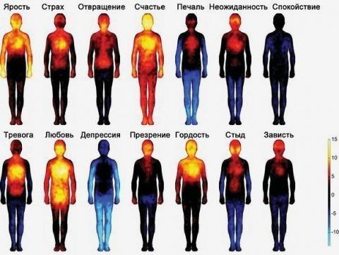Тепловая карта, показывающая, как мы чувствуем эмоции....