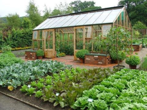 37 Советов садоводам и огородникам