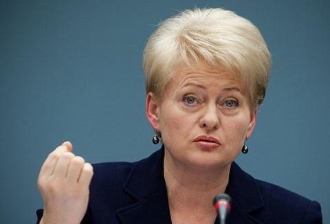 «Только так мы спасемся!»: Литва перешла к срочным мерам по России