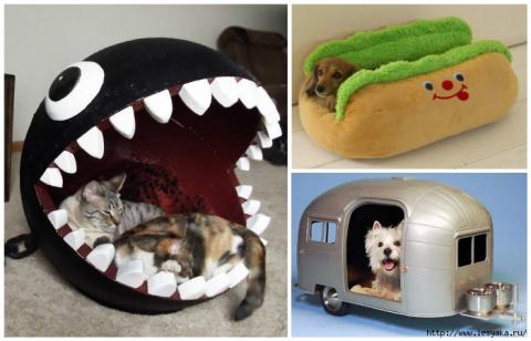 ТЕРЕМОК. 15 забавных домиков для кошек и собак