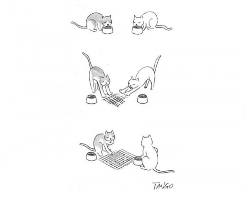 Забавные иллюстрации, которы…