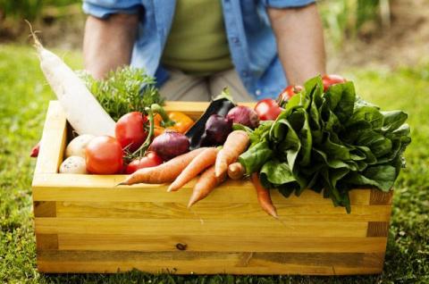 Какие новые блюда приготовить из сезонных даров природы