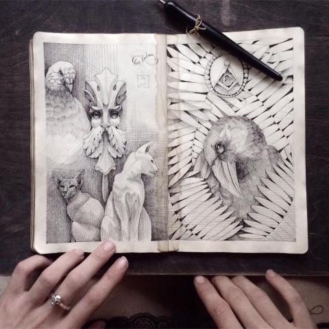 Элегантные иллюстрации Елены…
