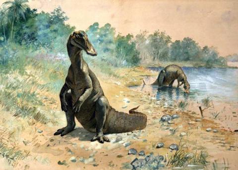Травоядные динозавры оказали…