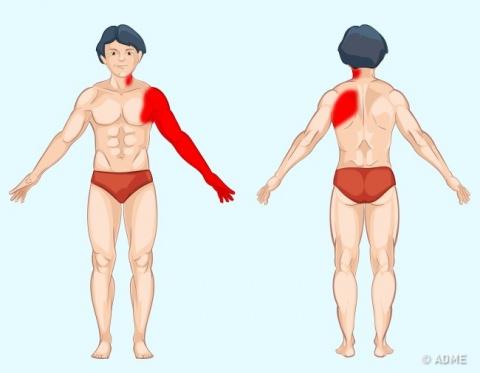 9 способов определить причину боли по месту ее локализации