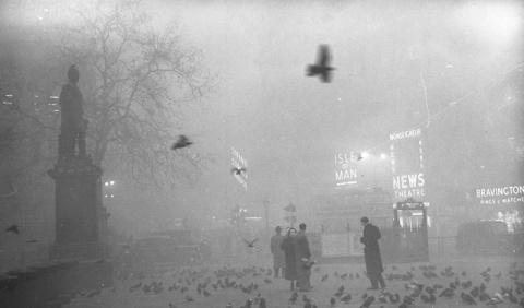 Смертельный туман, уничтожив…