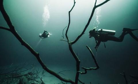 Удивительная подводная река …