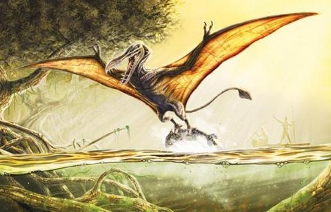 Африканский птерозавр или ис…