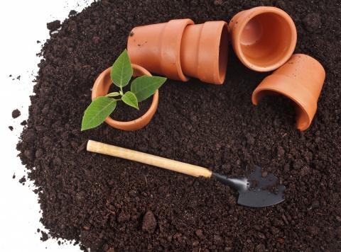 Секреты хорошего грунта. Готовим землю для посевной