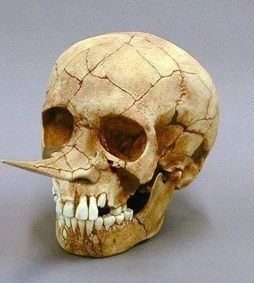Пиноккио — реальная история необычного человечка (и правда, немного деревянного)