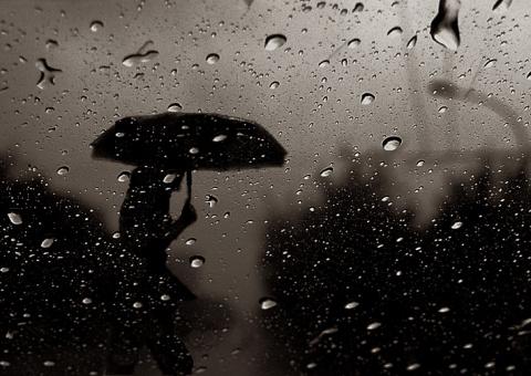 Мне бы каплей стать дождя ...