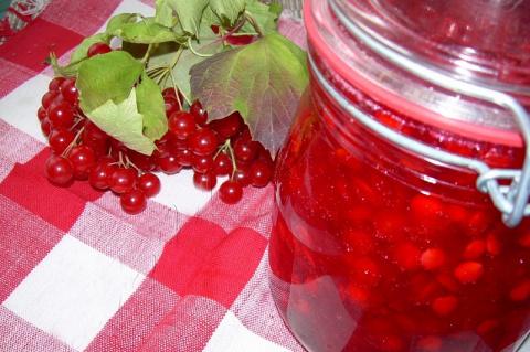 Калина — лечебные рецепты, пастила, варенье, желе
